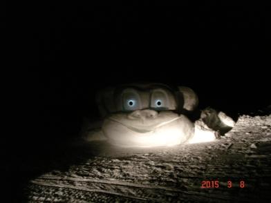 Le monstre du lac la nuit
